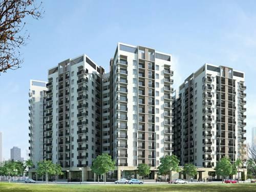 5 quy tắc vàng chọn căn hộ theo phong thủy tại Bình Định